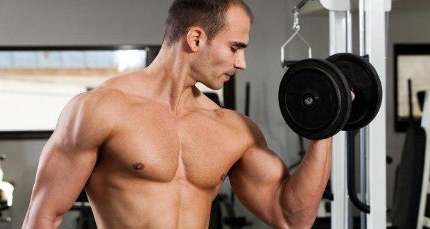 prendre du muscle biceps